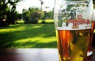 Los residuos de cerveza, una alternativa para regenerar huesos