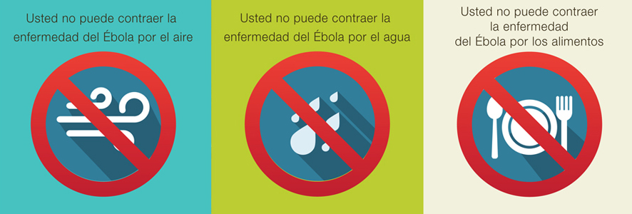Las 7 claves del ébola