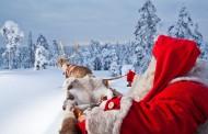 Laponia, la magia de la Navidad