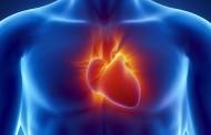 Médicos españoles prueban una terapia pionera con células madre para reparar el corazón tras un infarto