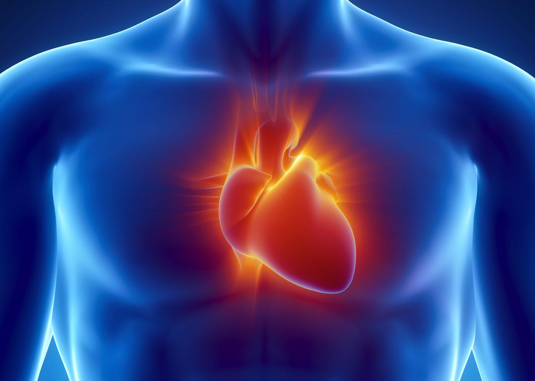Prueban un hidrogel para reparar el corazón y se confirma que es seguro para inyectarse en humanos