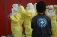 Descubren una vía farmacológica que utiliza el ébola para penetrar en los órganos