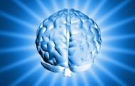 Un gen de Alzheimer puede mostrar efectos sobre el cerebro desde la infancia