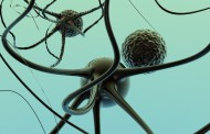 Un estudio con participación española identifica cómo la toxina del Parkinson causa la muerte neuronal