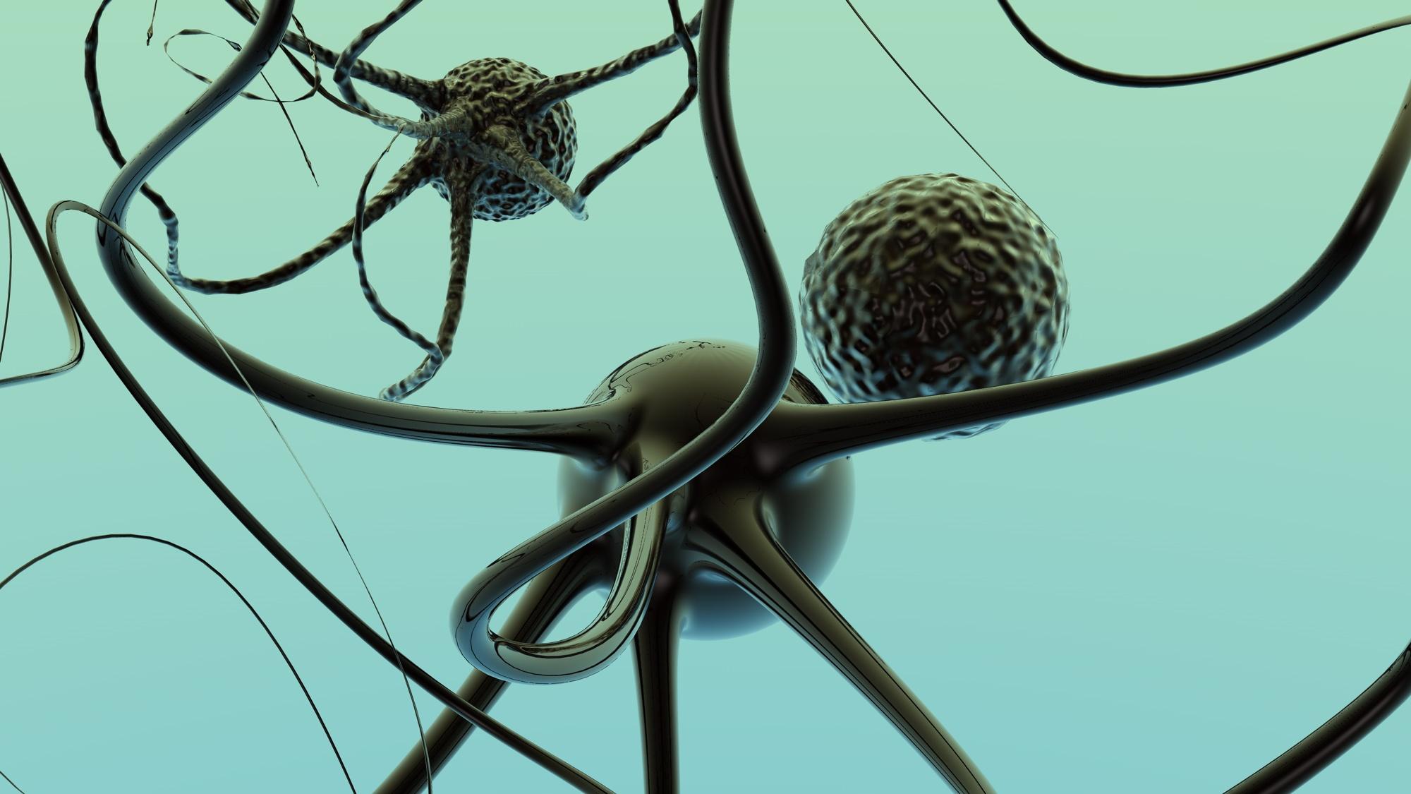 Un estudio identifica el mecanismo que desencadena la respuesta de las neuronas del cerebro