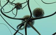 En España se diagnostican cada año unos 1.800 casos de esclerosis múltiple
