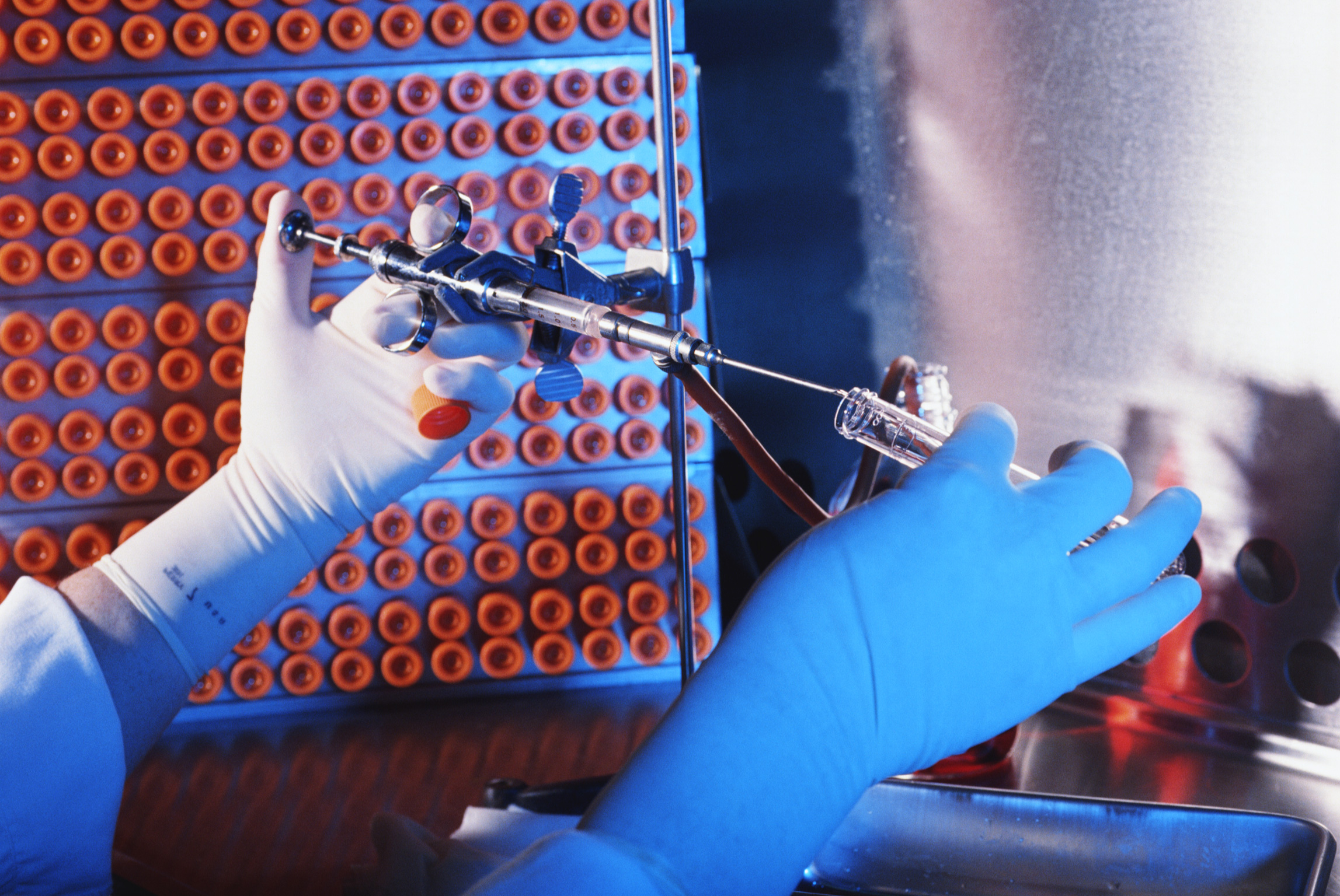 Científicos españoles descubren cómo cultivar células madre más seguras