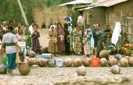La OMS recomienda mejorar los servicios de higiene y saneamiento del agua para combatir las enfermedades tropicales