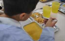 Sólo Galicia y Baleares están preparadas para atender alergias en los colegios
