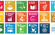 La ONU aprueba los nuevos Objetivos del Desarrollo Sostenible