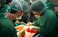 España, líder global en trasplantes y donaciones por 26º año consecutivo