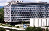 El Consejo Internacional de Enfermeras lleva la voz de la profesión a la OMS