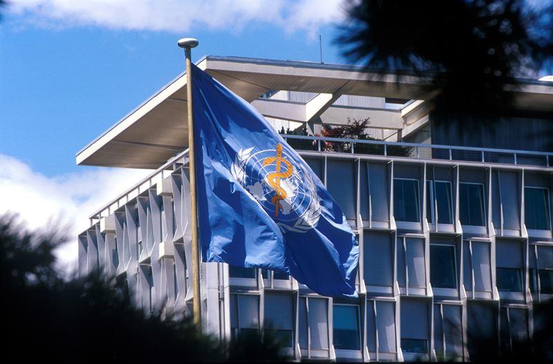 La OMS pide a Europa que la transición hacia la