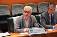 El PSOE pide revisar el estatuto del personal sanitario para evitar la encadenación de contratos eventuales