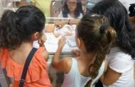 El servicio de Neonatología del Hospital Vall d'Hebron estrena unos talleres para hermanos de niños ingresados en la UCI