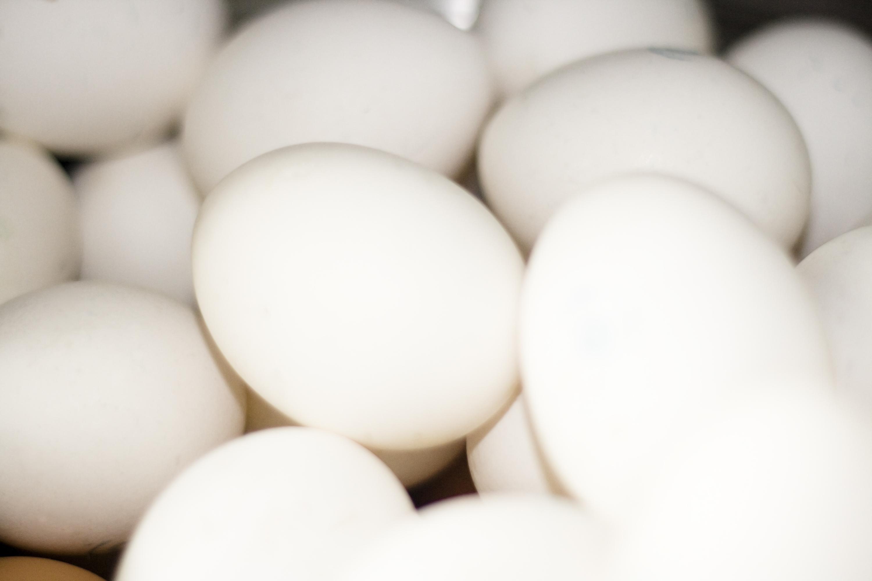 La ingesta de vitamina D reduce el riesgo de rechazo tras un trasplante de médula ósea