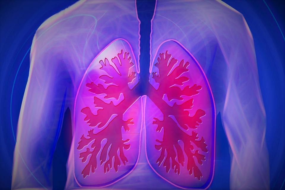 La detección precoz del cáncer de pulmon en sangre, orina o sudor, cada vez más cerca