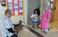 Una web que permite que niños con cáncer puedan adoptar perros en el hospital
