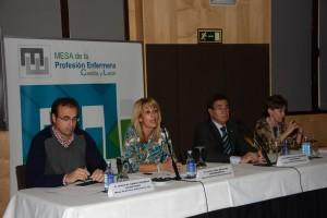 Los representantes de la Mesa de la profesión de Castilla y León.