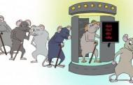 Un equipo de investigación internacional consigue revertir los signos del envejecimiento