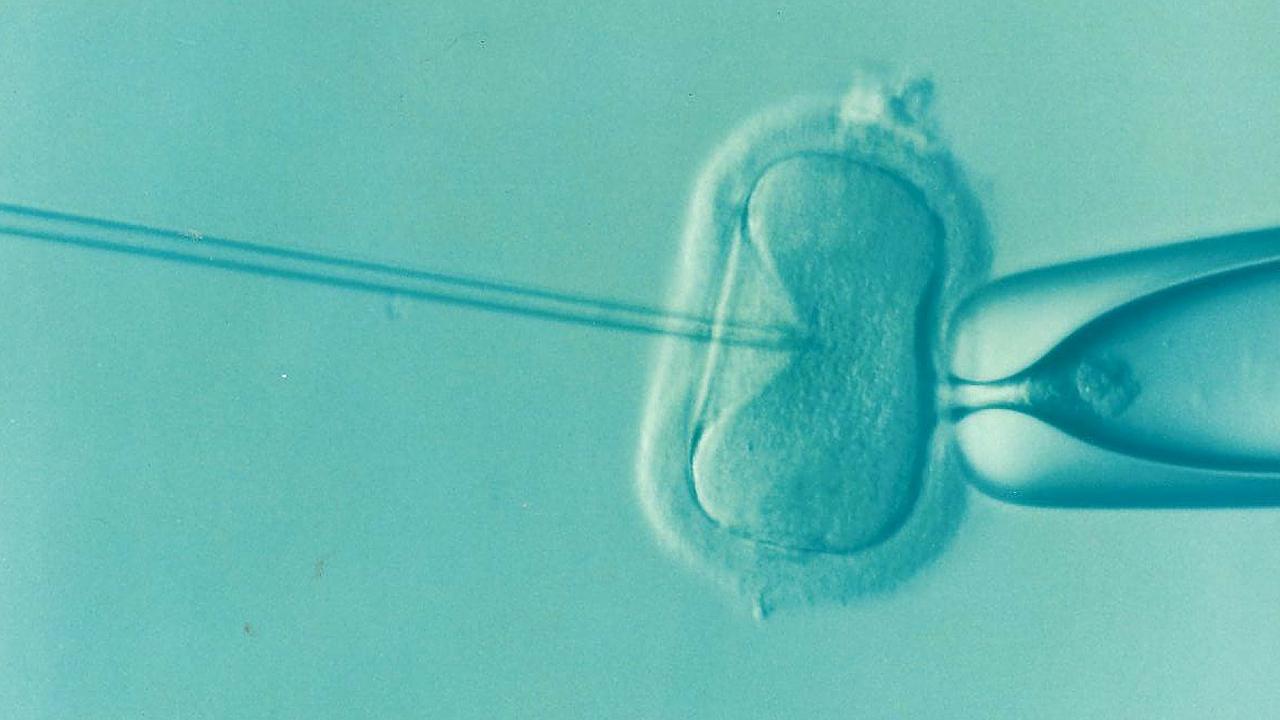 Un estudio vincula la fecundación in vitro con el riesgo de sufrir diabetes gestacional