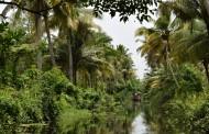 Kerala, la parte más desconocida de India
