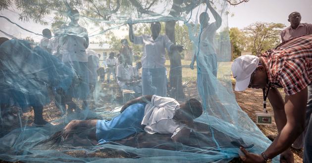 Tres países africanos comenzarán a administrar la vacuna de la malaria
