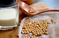 Los beneficios de la bebida de soja en la menopausia centra uno de los temas del Congreso del CIE