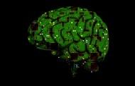 Diseñan por ordenador anticuerpos para 'atacar' el Alzheimer