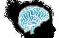 Los cambios hormonales de la menstruación no influyen en el funcionamiento del cerebro