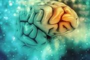 Nuevos síntomas neurológicos del COVID-19: delirio, inflamación cerebral y accidente cerebrovascular