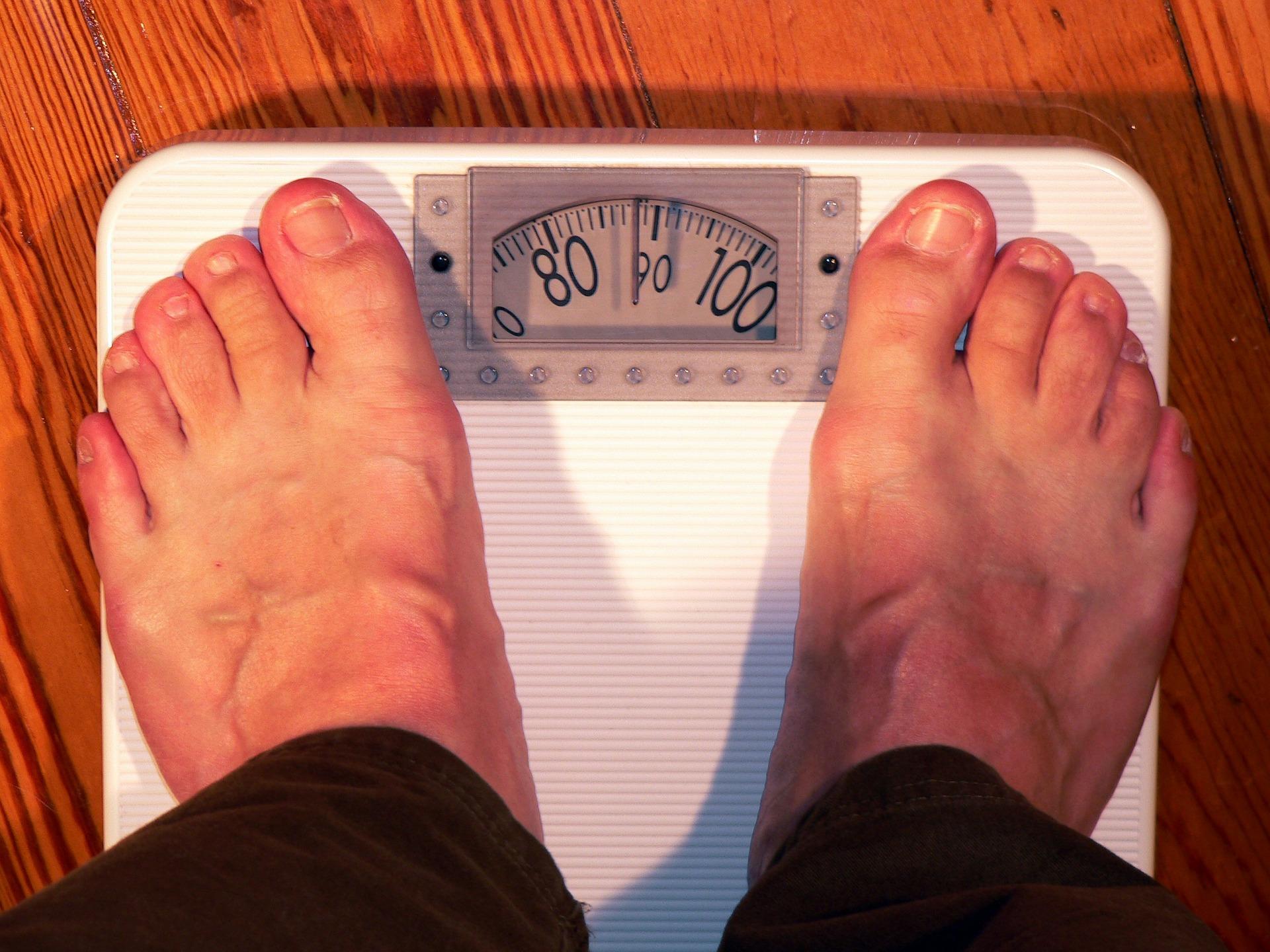 Conservantes de los alimentos pueden alterar las hormonas y favorecer la aparición de obesidad