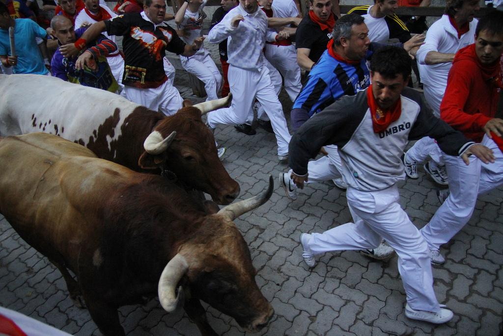 Extremadura apuesta por la formación de enfermería en festejos taurinos populares