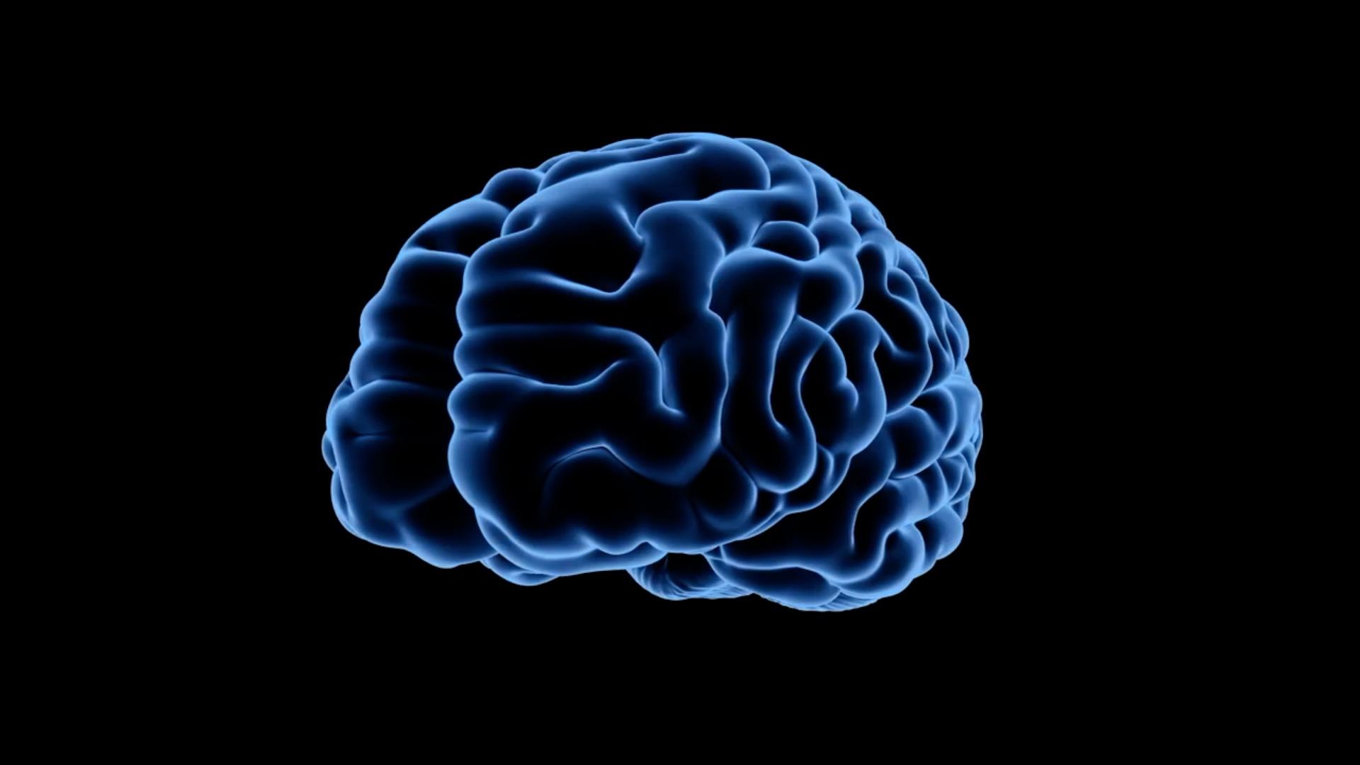 Investigadores inician un ensayo con un tratamiento que combina virus e inmunoterapia en tumores cerebral