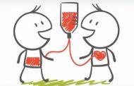 España alcanza los 380.000 donantes de médula, con un aumento de un 12% interanual