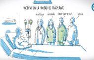 <i>El viaje de Pedro</i>: un vídeo que ayuda e informa sobre el trasplante de médula ósea