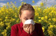 La mejor información sobre alergia en el I Congreso Internacional Virtual de MSD