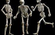 El Colegio de Enfermería de Salamanca acoge una jornada sobre los factores de riesgo de la osteoporosis