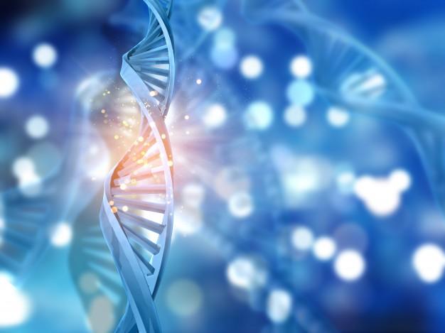 Identificados nuevos genes relacionados con el riesgo de sufrir cáncer