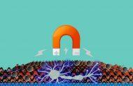 Bioingenieros usan la fuerza magnética para conseguir controlar el dolor por una enfermedad o lesión