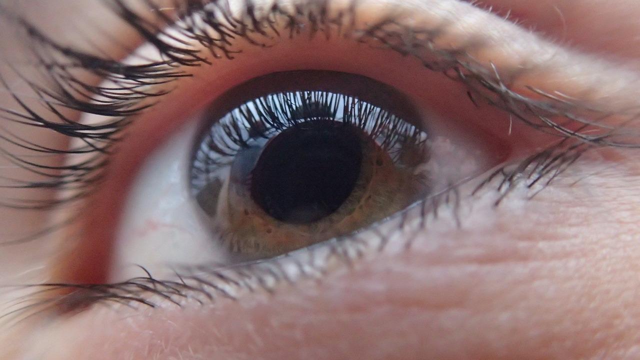 Una investigación sugiere que el glaucoma podría ser una enfermedad autoinmune