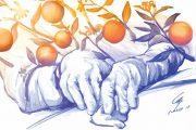 Un congreso en Valencia para conocer más sobre úlceras por presión y heridas crónicas