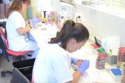 El secreto de la sepsis puede estar en una célula rara