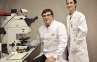 Investigadores del CNIO confirman el nexo entre el cáncer de próstata más agresivo y el cáncer de mama hereditario