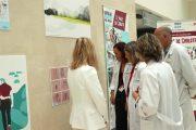 El Hospital La Fe acoge la exposición #BipolarNoEsBroma para dar visibilidad a la enfermedad