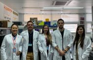 Científicos crean nuevos modelos de piel artificial con células madre para uso inmediato en grandes quemados