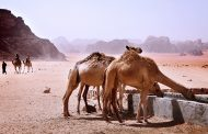 Wadi Rum (Jordania):