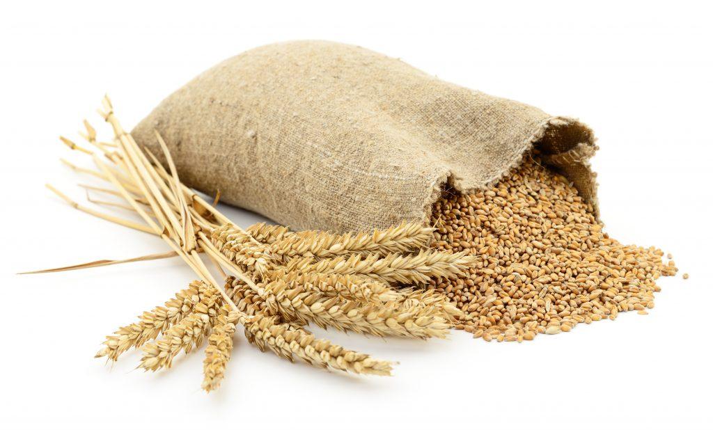 Las enfermeras de Nutrición recuerdan la importancia de los cereales para mantener una dieta saludable