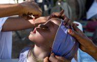La OMS declara a África libre de polio tras no registrar casos en los últimos cuatro años