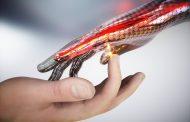 Investigadores australianos crean una piel electrónica que puede detectar el tacto, dolor y calor